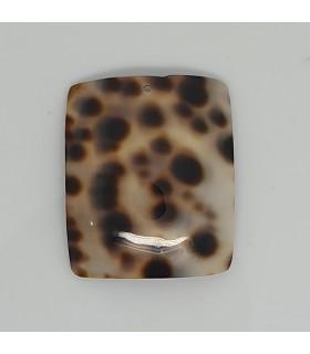 Seashell Rectangular Smooth Pendant 30x25mm.-Item.11644