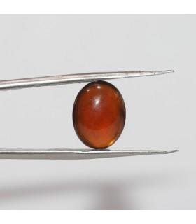 Hessonite Garnet Oval Cabochon 14.5x11.5mm. (8.4 ct.).- Item.236PE