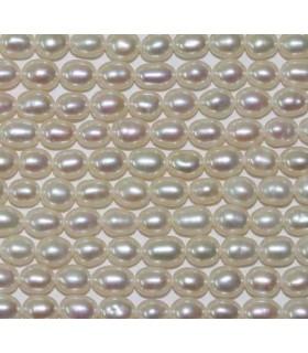 Perla Oval 3-4mm -Hilo 40cm- Ref.2953