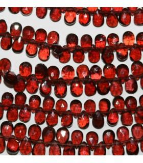 Garnet Faceted Drop 6x4mm.-Strand 20cm.-Item.9816
