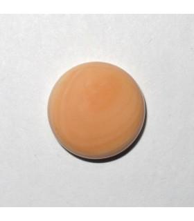 Shell Round Cabochon 15 mm. (4 pcs.).- Item: 839CB