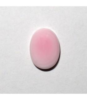 Cabujón Concha Oval 8x6 mm. (10 piezas).- Ref: 563CB