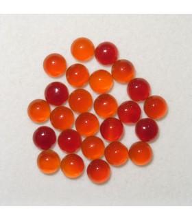 Carnelian Round Cabochon 4 mm. (25 pcs.).- Item: 902CB