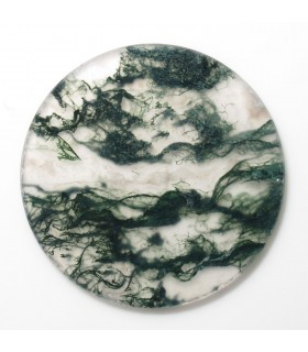 Moss Agate Round Flat Disk 25 mm. (4 pcs.).- Item: 964CB