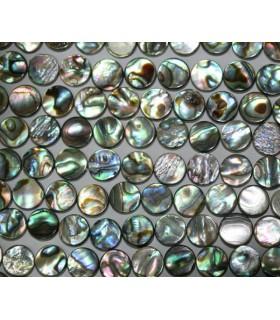 Concha Paua Moneda 10mm.-Hilo 40cm.-Ref.6008